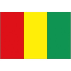 Flag of Guinea Magnet